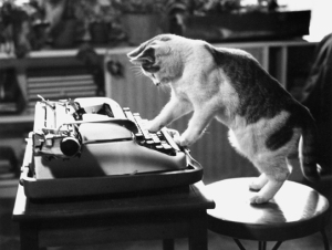 cat-on-typewriter